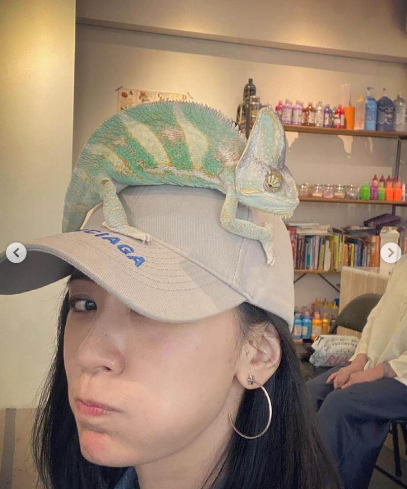 賈靜雯 store.coolsaid.com coolsaid.com